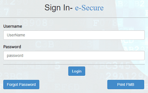 ap esecure sign in form