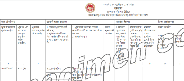 digitized khasra copy on madhya pradesh bhu lekh portal